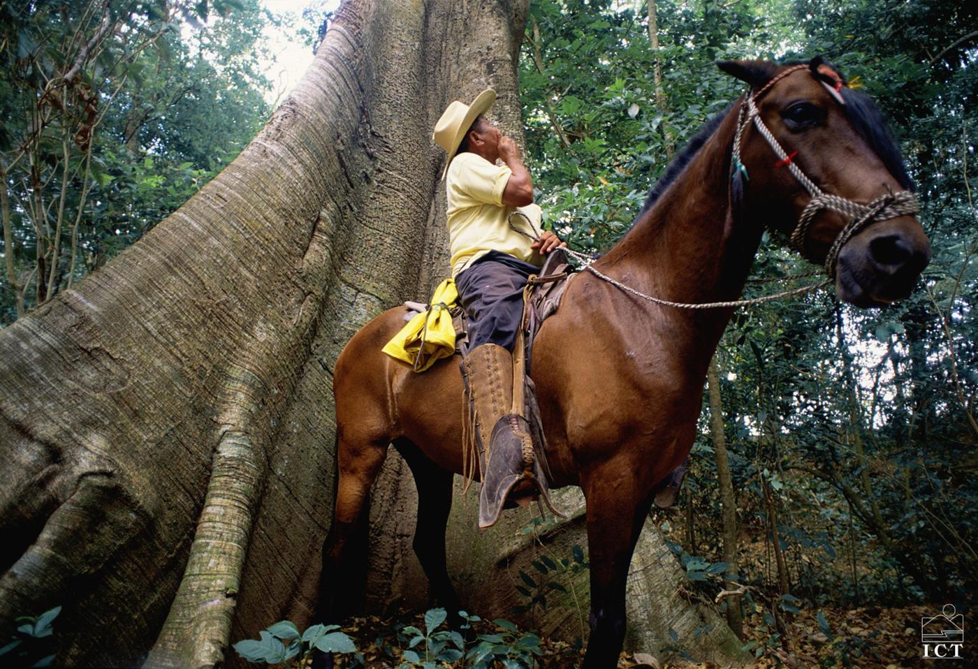cos02-horse-ride-to-la-fortuna-falls-free-ict