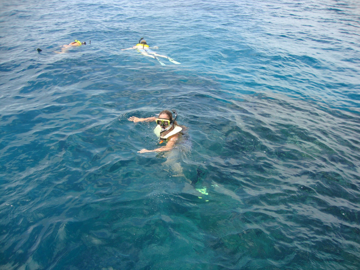 cos17-snorkellingmarinereserve-free-cm