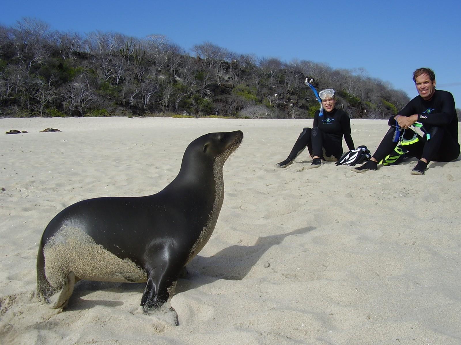 ecu16-wildlife-watching-in-the-galapagos-jl-free