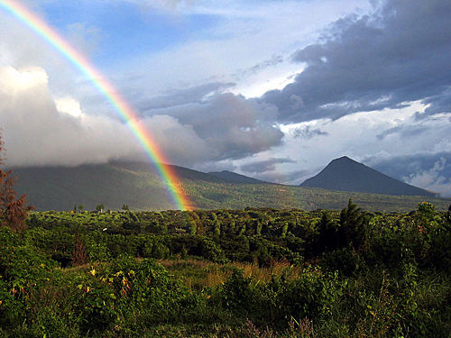 SAL06_RutaDeLasFlores_Picassa_Cordillera_De_Apaneca