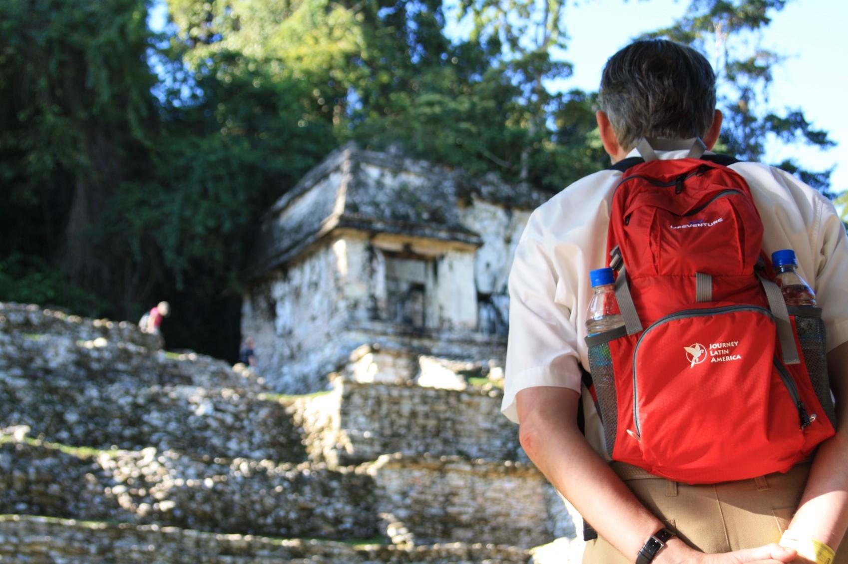 mex17-palenque-free-roselatham