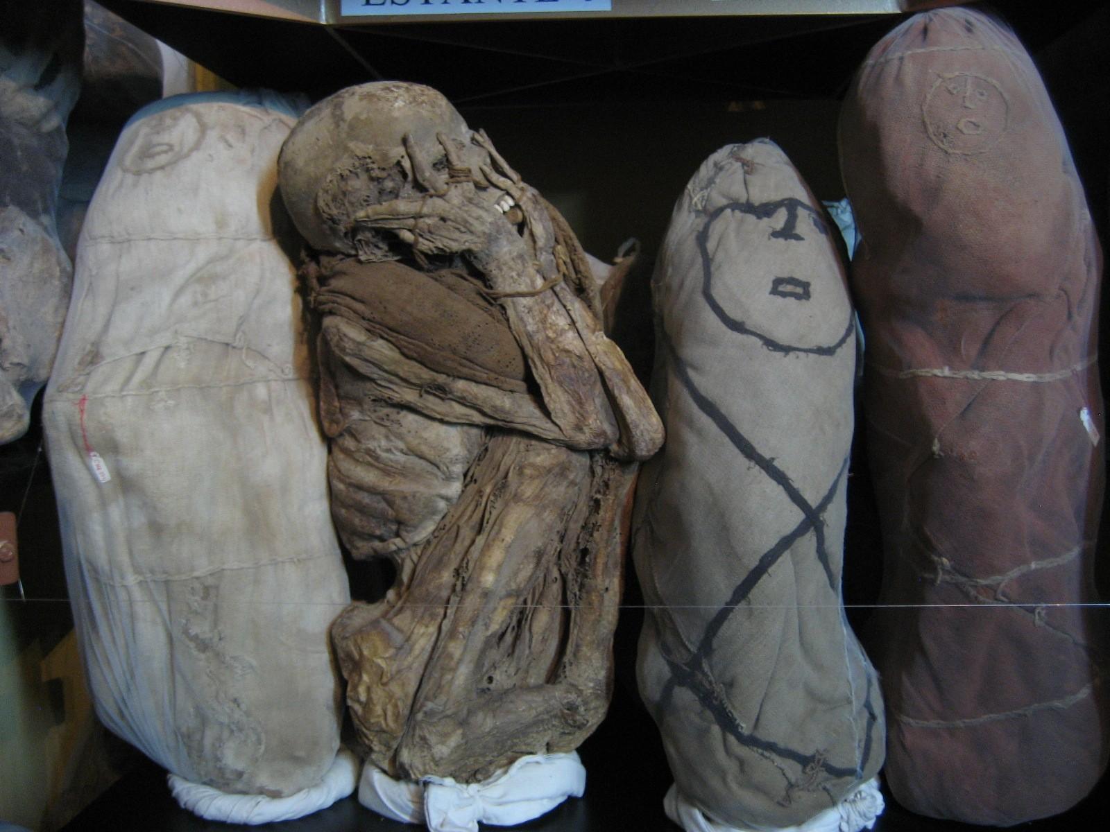 per07-visit-a-museum-of-mummies-free-im